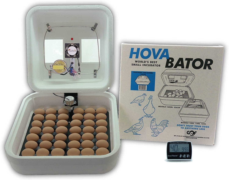HovaBator Advanced Egg Incubator Combo Kit review