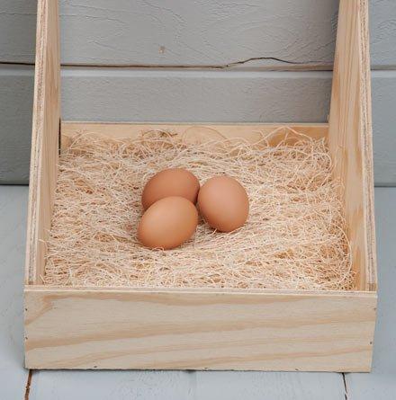 Duncans Poultry Excelsior Nest Pads  review