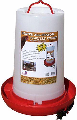 "Farm Innovators ""All-Seasons"" Heated Plastic Poultry Fountain review"