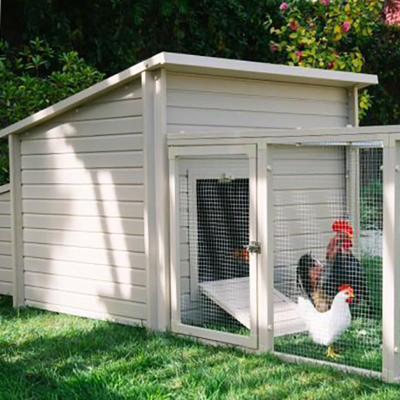 plastic chicken coop