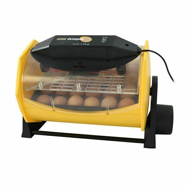 Brinsea Products Manual Egg Incubator review