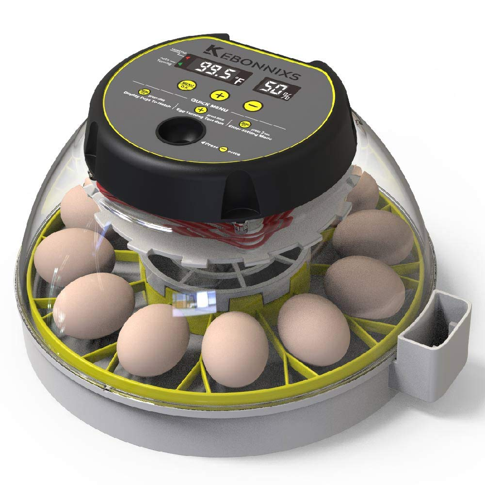 KEBONNIXS 12 Egg Incubator with Humidity Display review