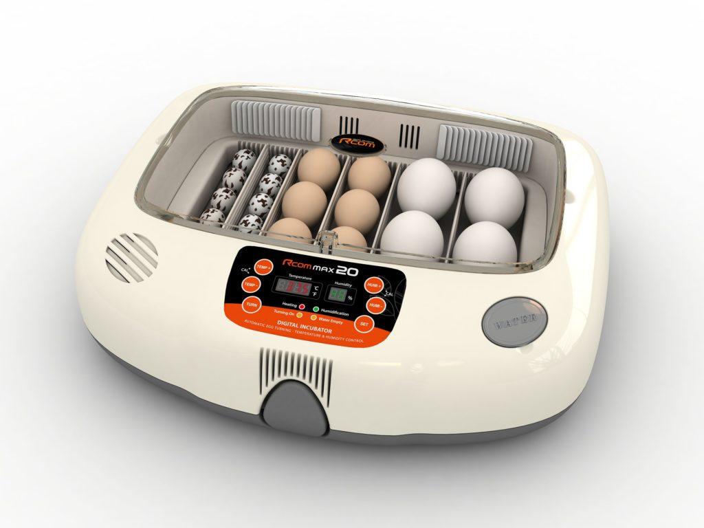 top rated incubator