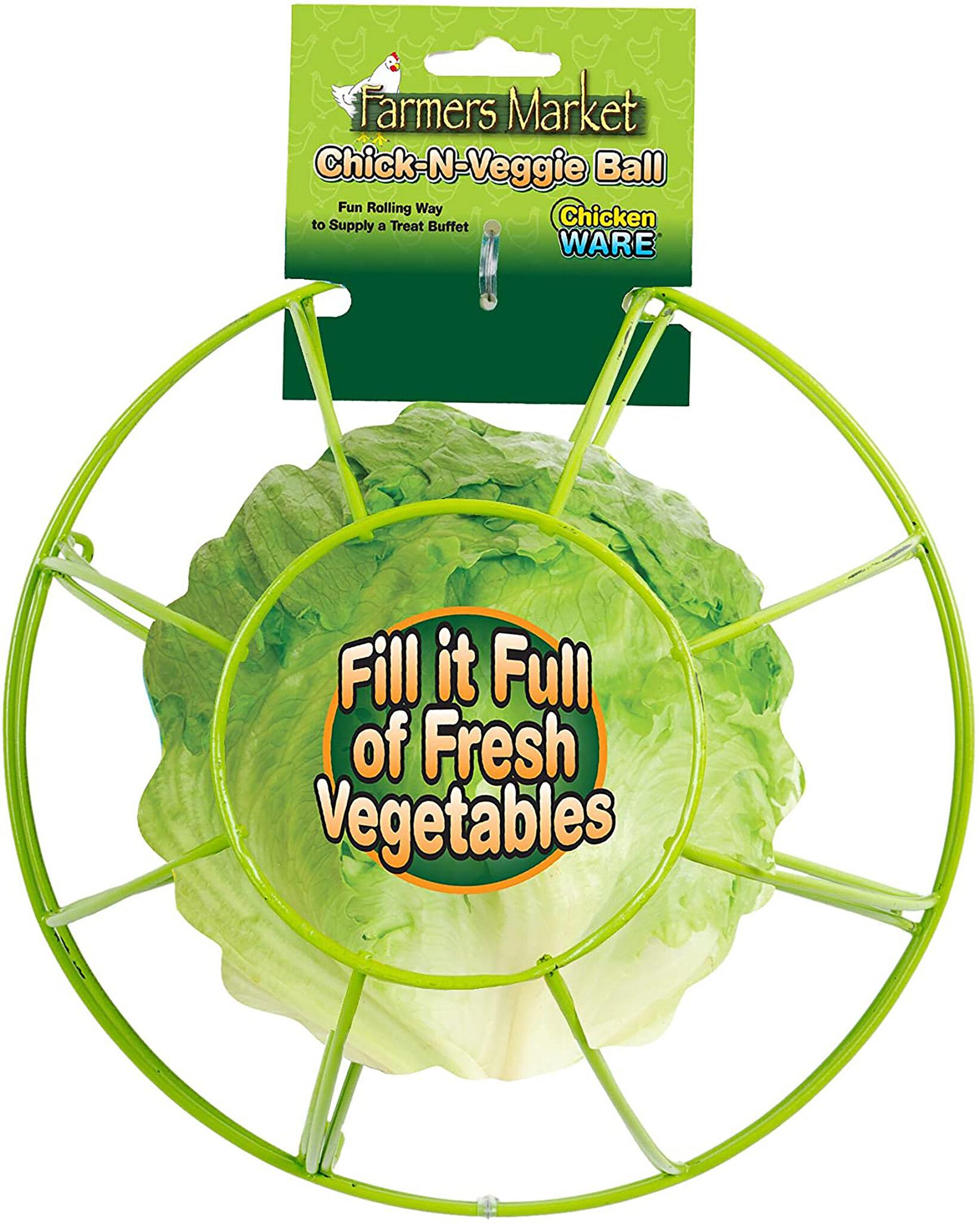 Chick-N-Veggie Treat Ball