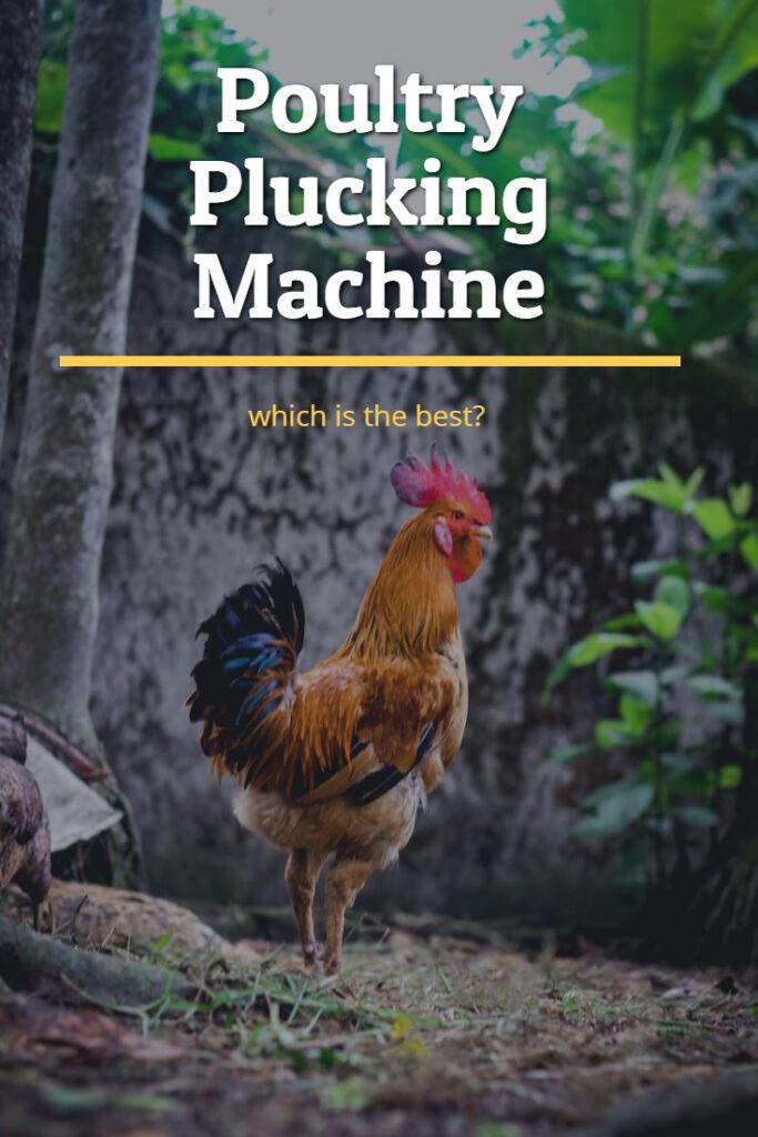 plucking mashine