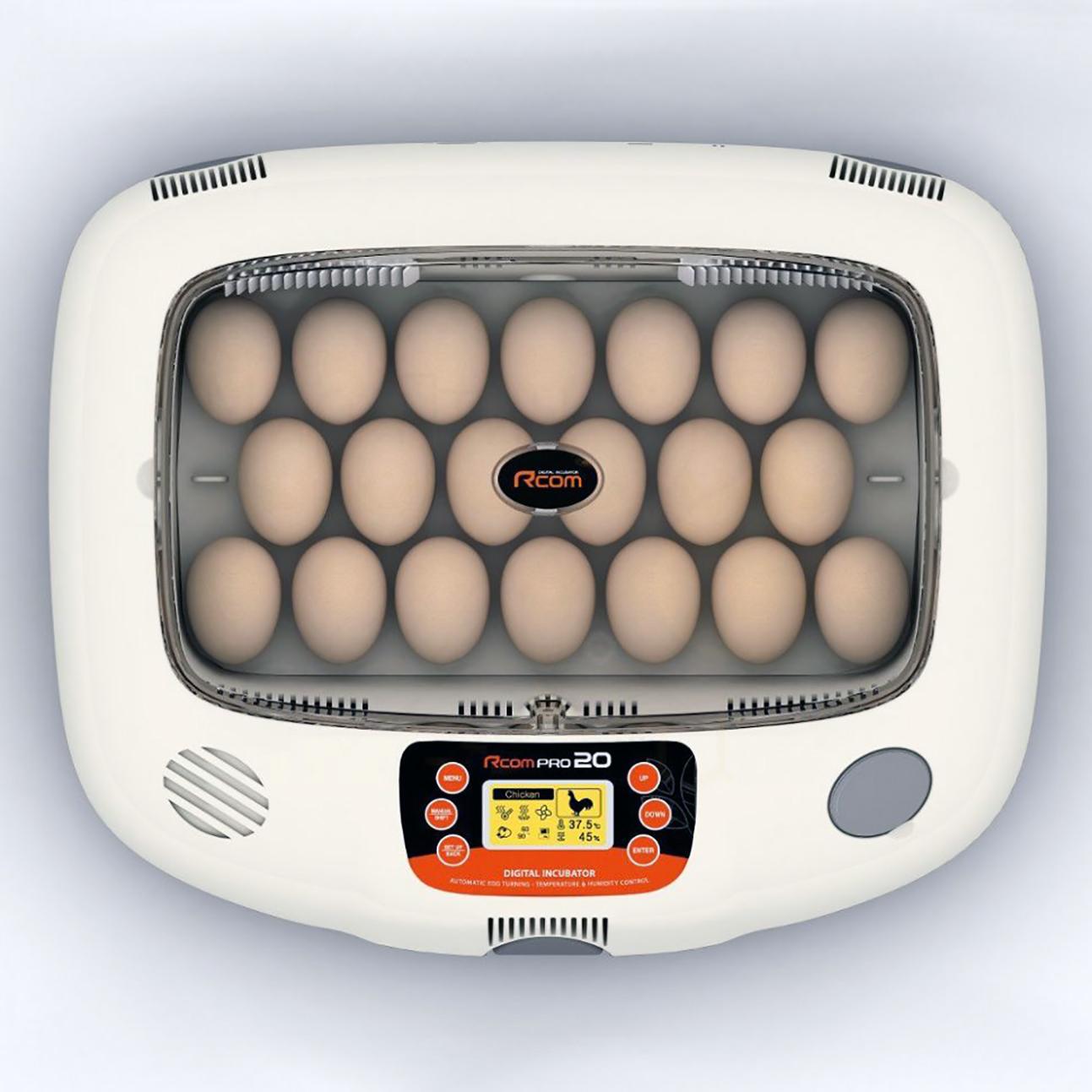 top quality egg incubator