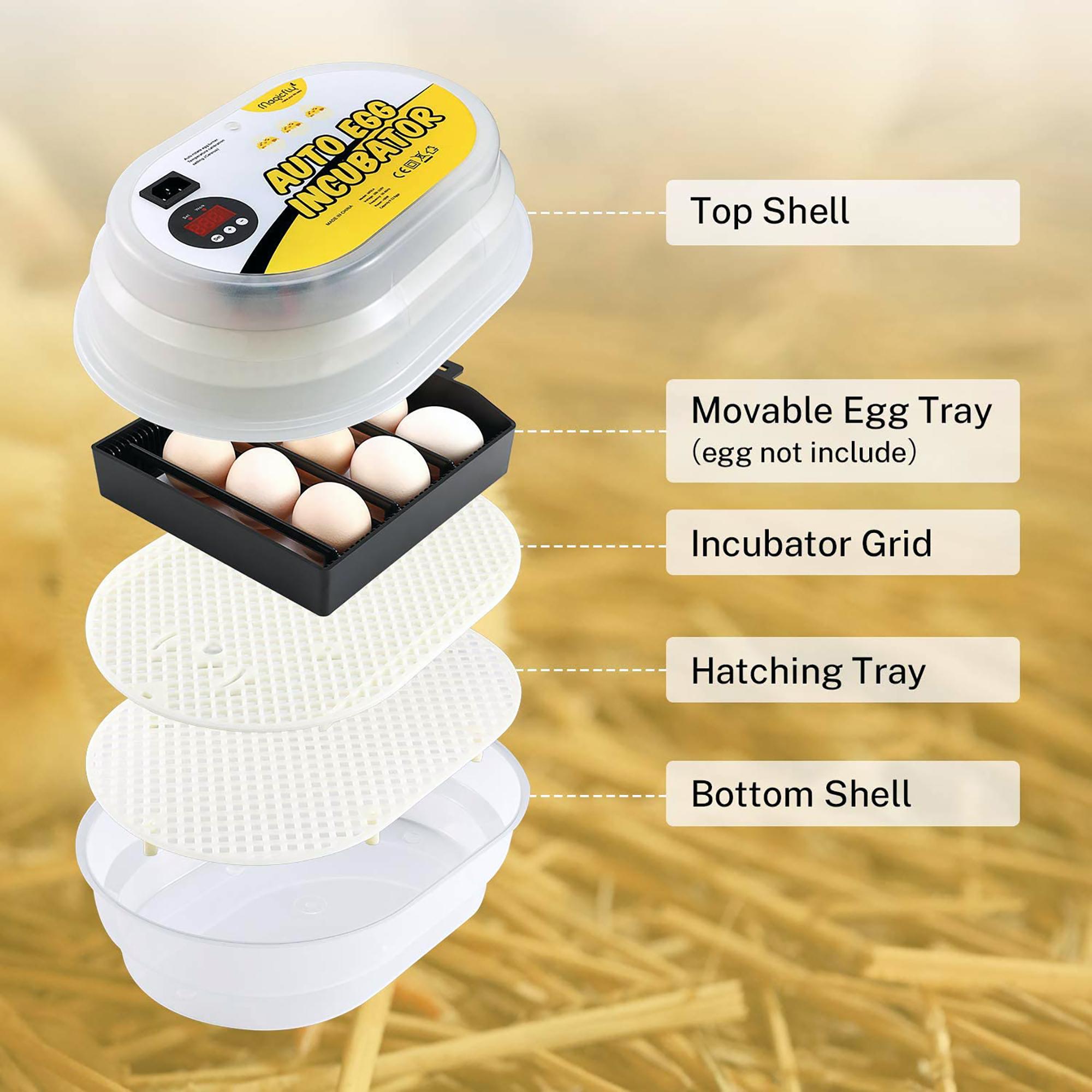 the best small incubator
